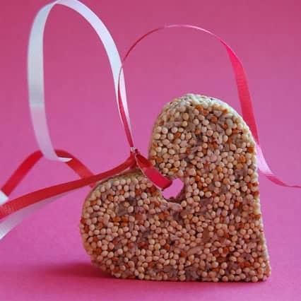 Love birds valentine 39 s day bird feeders wine glue for Bird seed glue recipe