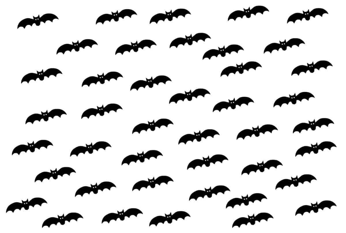 bats_candle