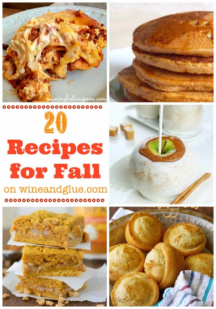 20 Fall Recipes | Twenty great appetizers, snacks, main dishes, and desserts that are perfect for fall! on wineandglue.com