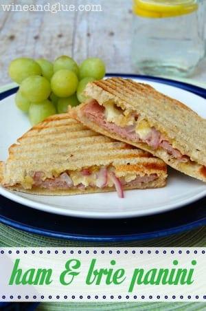 Ham and Brie Panini