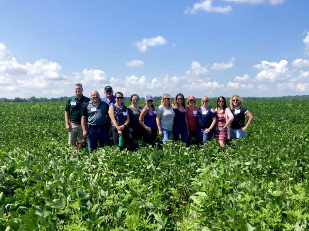 group of bloggers in a soy bean field