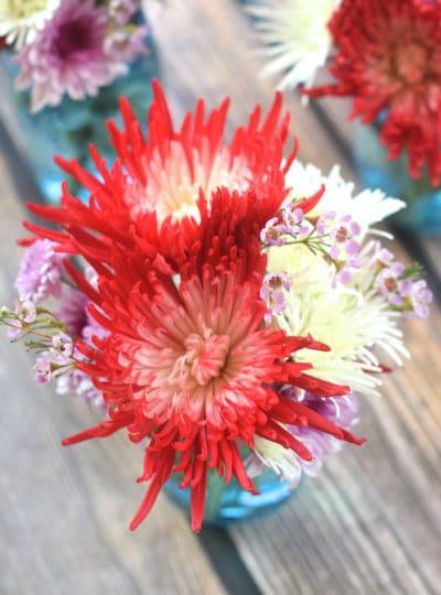 Five Flower Arrangements for Less than Twenty Dollars