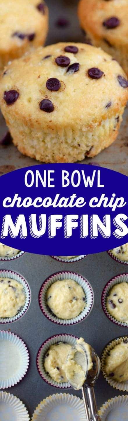 one_bowl_chocolate_chip_muffins_bakery_style_easy