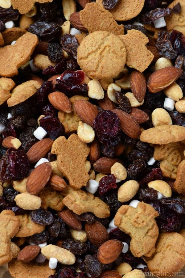 An overhead photo of the S'mores Trail Mix which has different shaped graham crackers, almonds, raisins, dried cranberries, mini marshmallows, almonds, and peanuts.