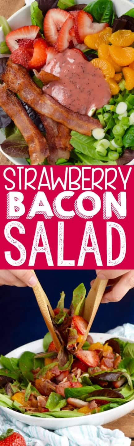 This Strawberry Bacon Salad is easy to throw together but packed with tons of amazing flavor! It's easy enough for a weeknight dinner but delicious enough to serve company!