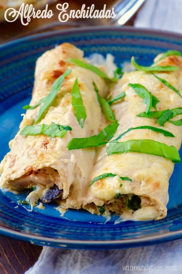 On a blue plate, the Alfredo Enchiladas have cheese oozing out and topped with spinach.