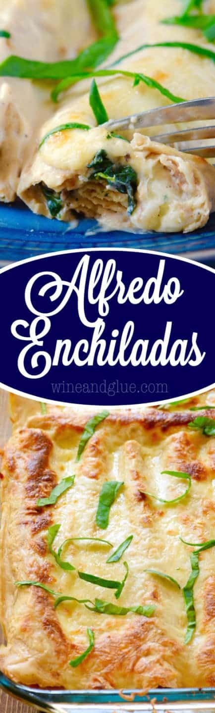 A fork digging into the Alfredo Enchiladas showing the cooked spinach, Alfredo Sauce, and mushrooms.