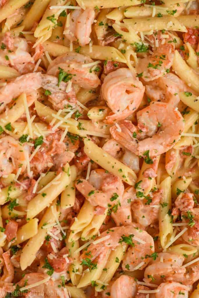 up close view of creamy shrimp and pasta recipe