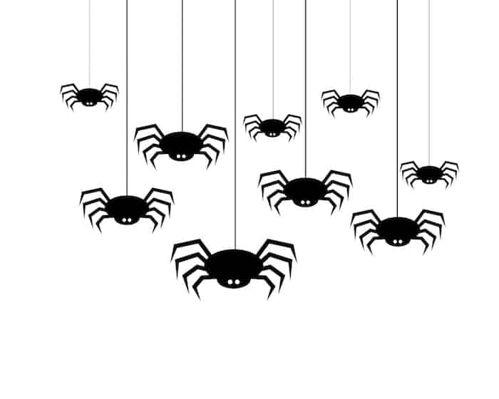 easy_halloween_decoration_spider-copy