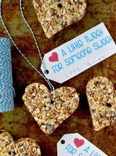 Valentine's Day Bird Feeder Printable Tags