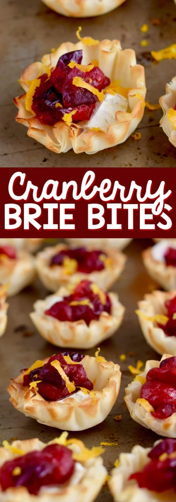 In little filo shells, cranberries and orange zest tops the brie cheese.