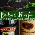 collage of baileys martini photos