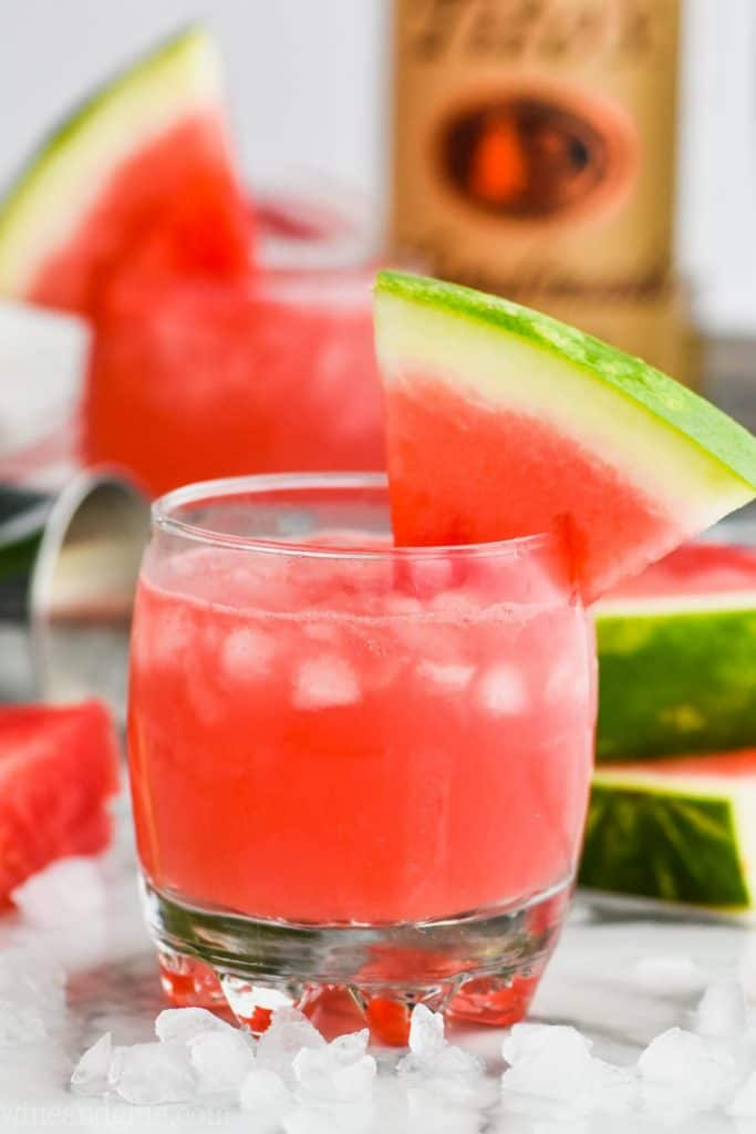 front view of watermelon vodka tonic in a tumbler and garn