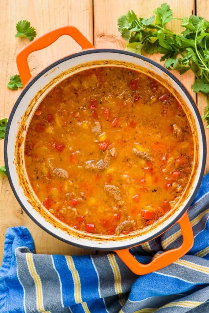 overhead view of stock pot full of steak fajita soup recipe