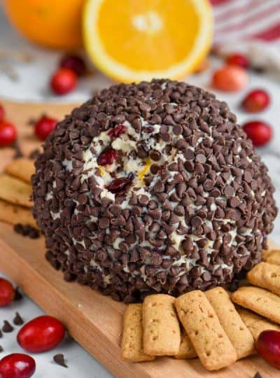 Cranberry Orange Chocolate Chip Cheese Ball