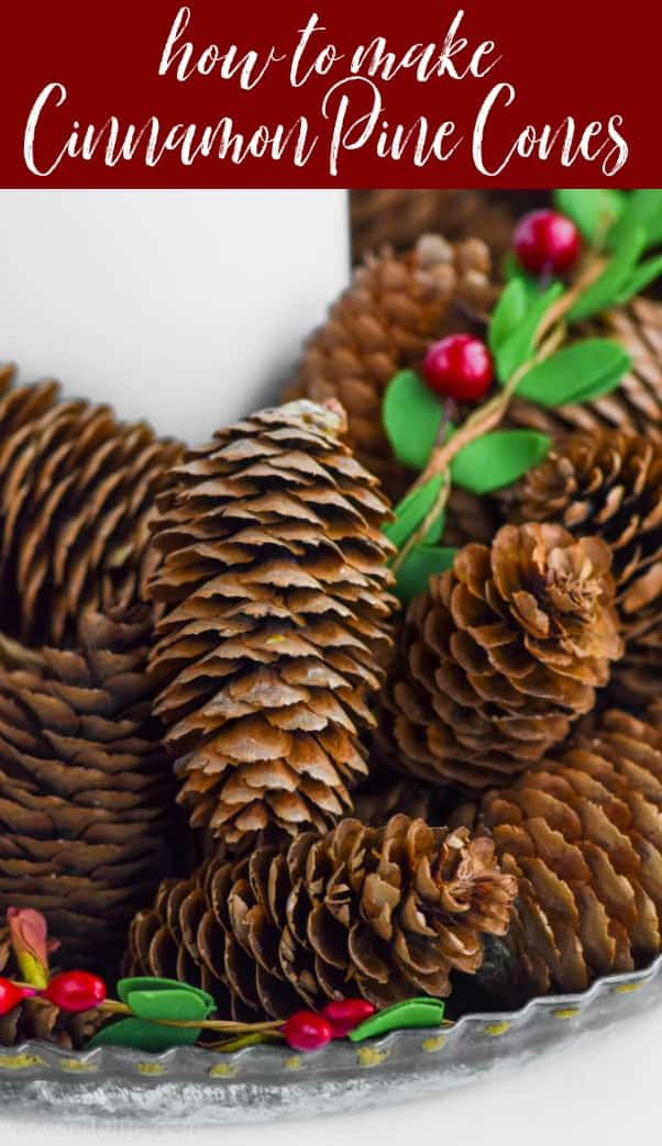close up of a cinnamon scented pine cone