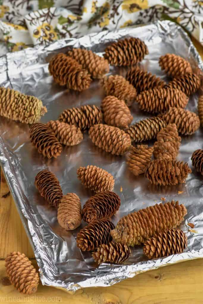 pine cones placed on a tray to bake