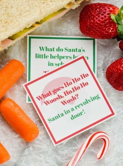 Christmas Lunch Box Jokes
