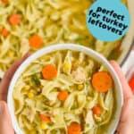 hands holding a bowl of turkey noodle soup