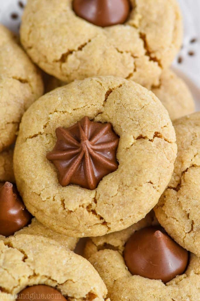 close up of a peanut butter star cookie - a crisp peanut butter cookie that has been rolled in sugar with a chocolate star candy pushed into the top