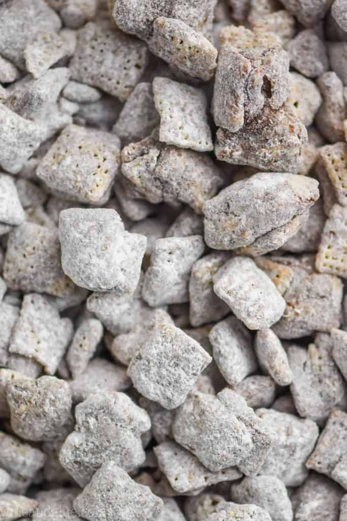 extremely close up view of puppy chow