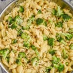 close up overhead view of broccoli pasta recipe made with shells, broccoli florets, red pepper flakes and freshly grated parmesan cheese