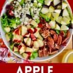 pinterest image for apple pecan salad