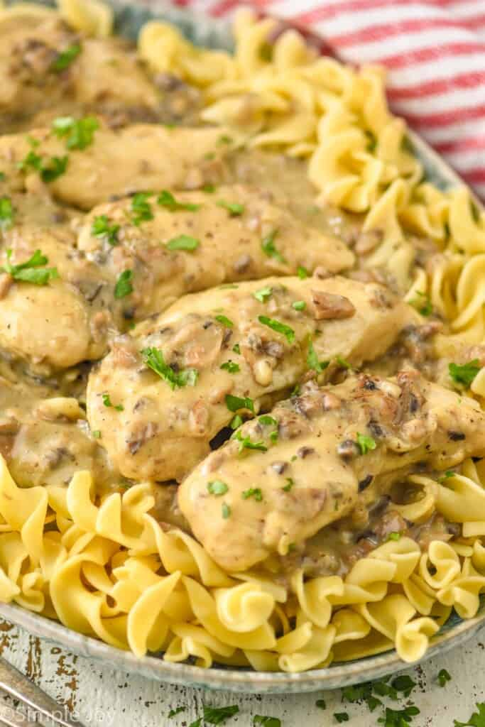 close up of chicken tenders smothered in cream of mushroom soup on a bed of noodles